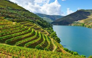 Douro Valley Portugal